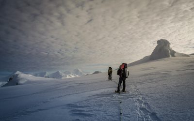 ¿Te gustaría trabajar en la Antártida? Ahora es el momento
